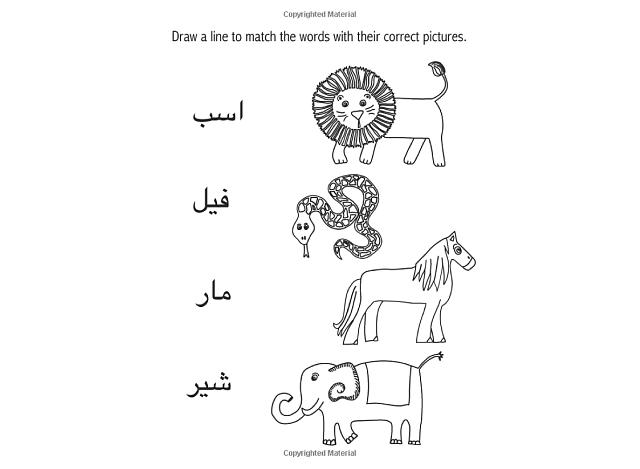 Leila's Persian Alphabet Adventure: Beginning Farsi